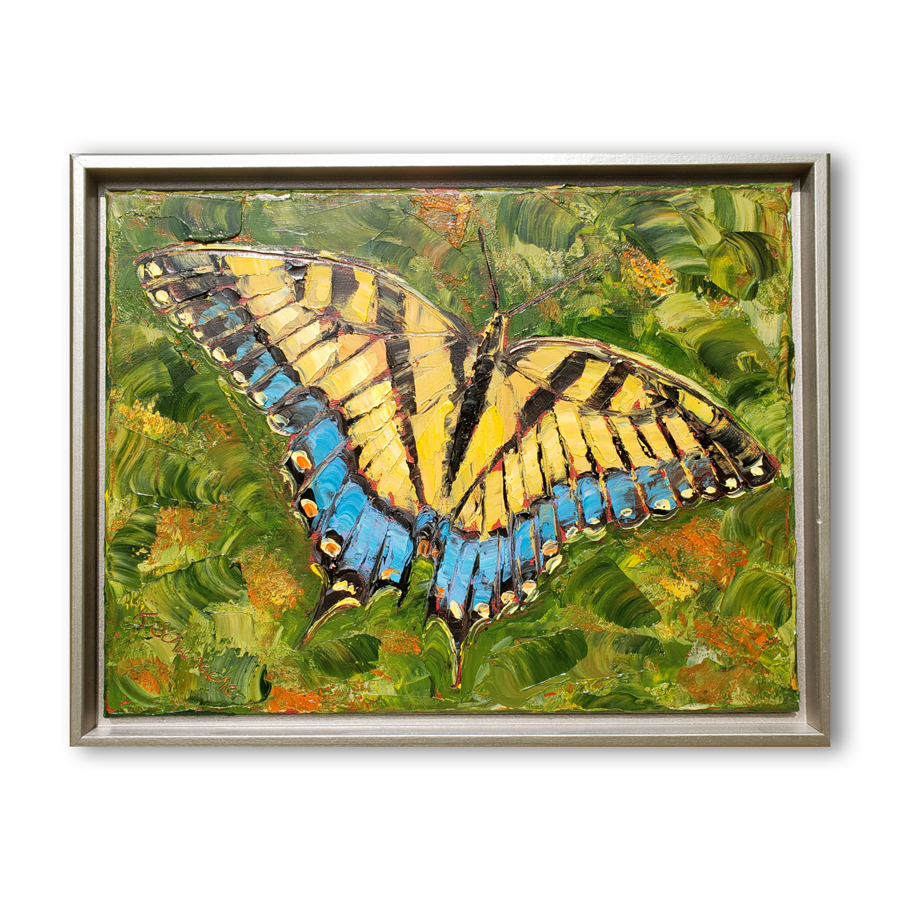 Eastern Tiger Swallowtail 14×16 framed hung low res