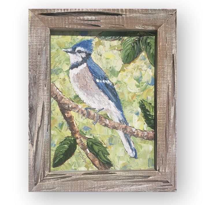 blue Jay 15×12 hung on bg low