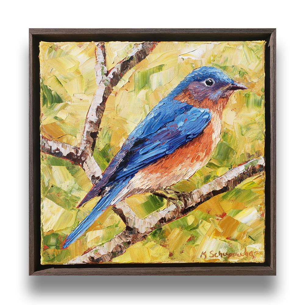 Bluebird royalty 14×14 framed on back web